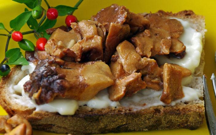 Crostini con funghi e gorgonzola