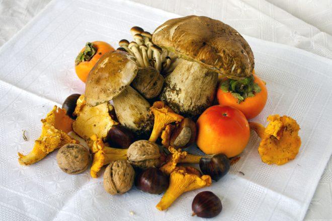 35 ottime ricette per cucinare i funghi nel modo migliore for Cucinare funghi